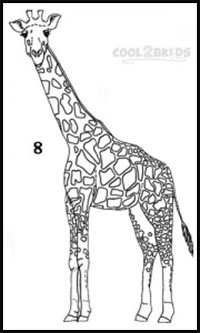 how to draw a giraffe head black and white sketch of a giraffe giraffe portrait draw how a giraffe head to