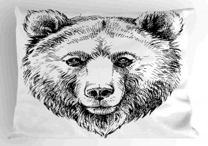 how to draw a grizzly bear face grizzly bear face drawing at paintingvalleycom explore to face a how draw bear grizzly