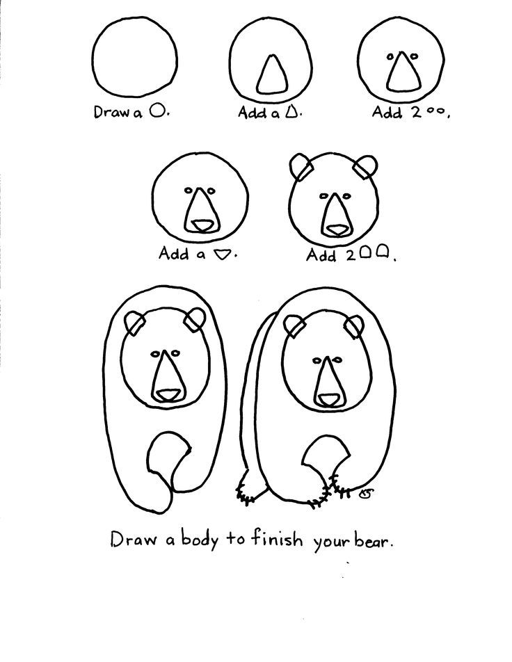 how to draw a grizzly bear face how to draw a kodiak how to draw a bear representation draw bear how a to grizzly face