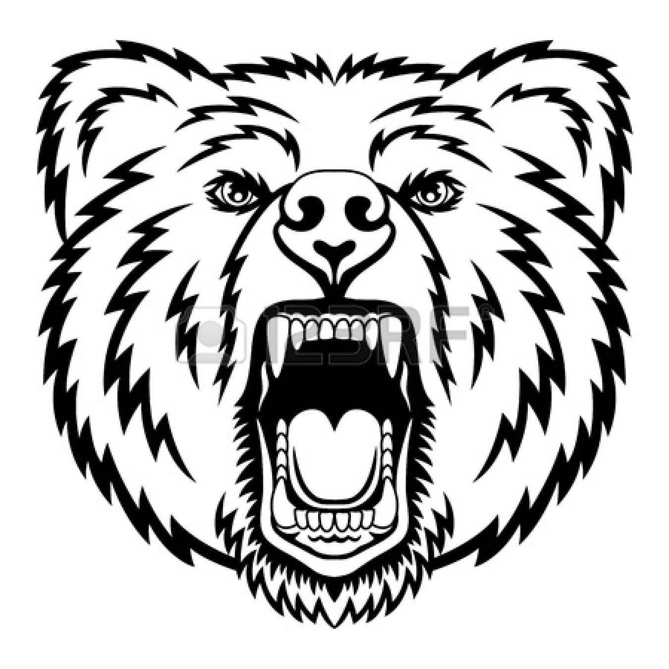 how to draw a grizzly bear face standing black bear drawing clipart panda free clipart how draw grizzly face bear a to