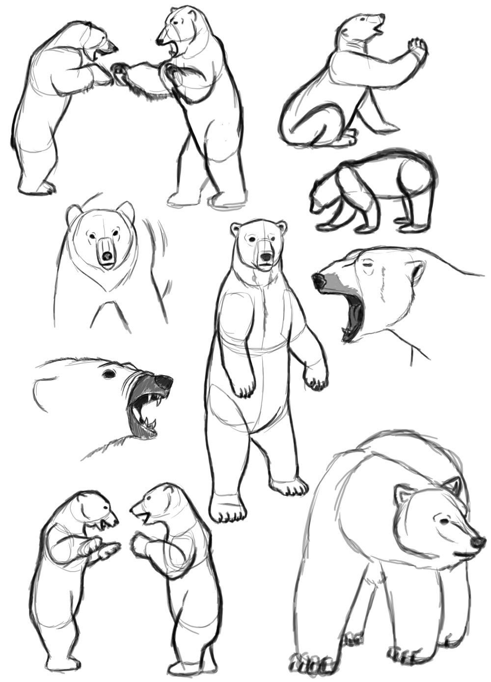 how to draw a grizzly bear face the domain name popistacom is for sale in 2019 art a how bear grizzly to draw face