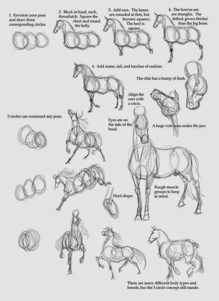 how to draw a horse 1001 ideas for easy drawings for kids to develop their horse how a to draw