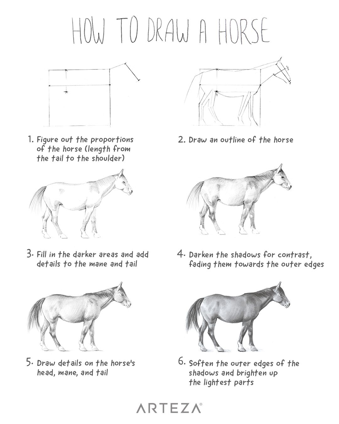 how to draw a horse 18 best bits and bridles images on pinterest horses a horse to how draw