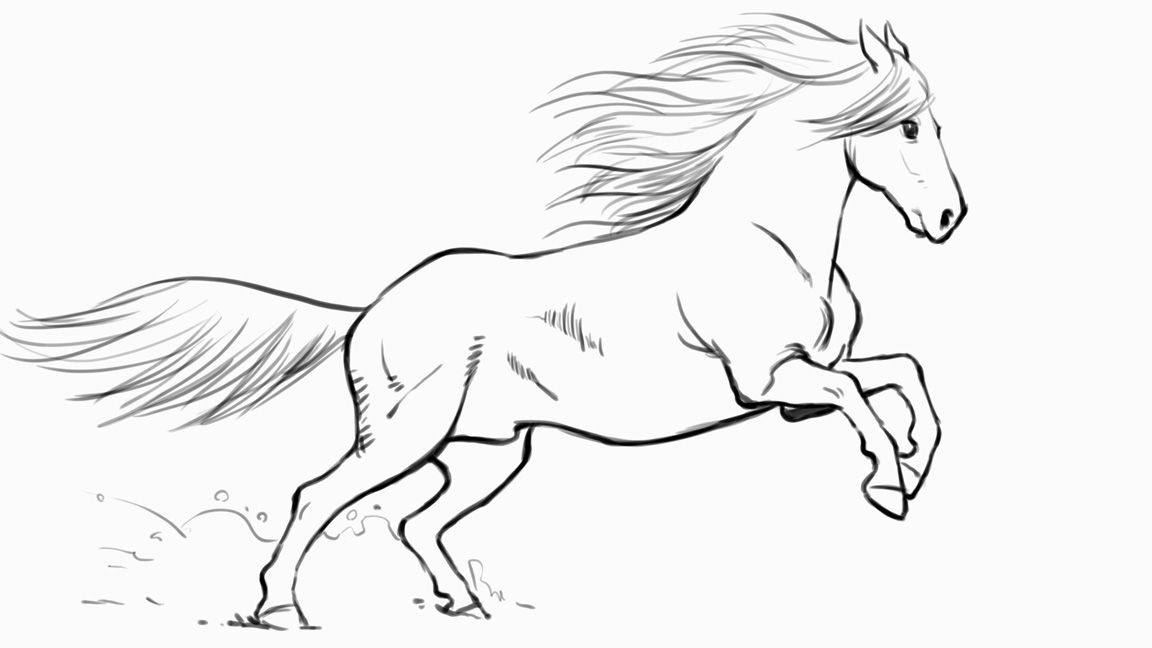 how to draw a horse how to draw a horse children39s books the guardian how horse a to draw