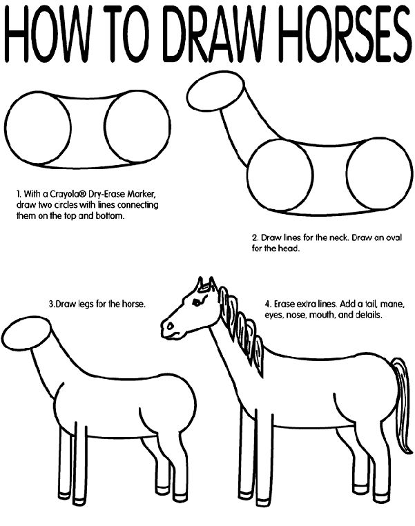how to draw a horse how to draw a horse children39s books the guardian how to horse draw a