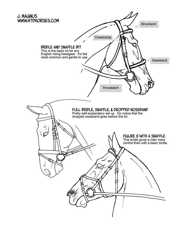 how to draw a horse how to draw a horse horse to how a draw