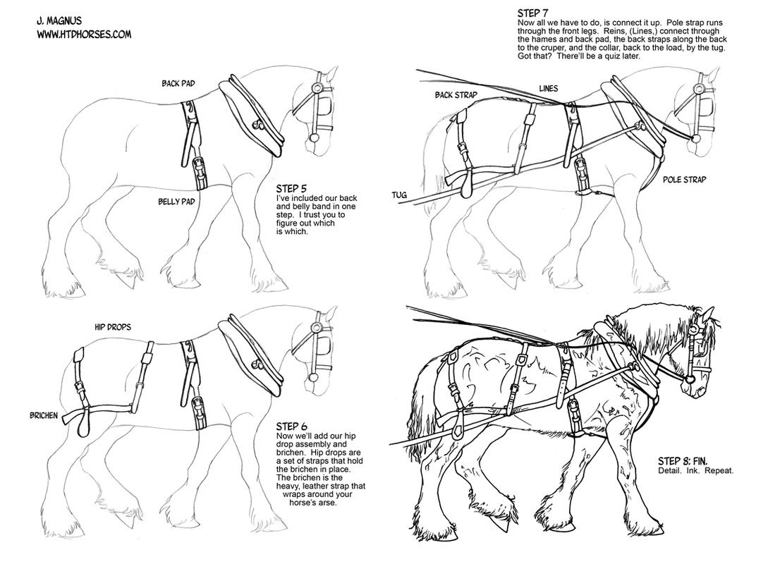 how to draw a horse how to draw horse tack tack how to draw horses horse to a horse how draw