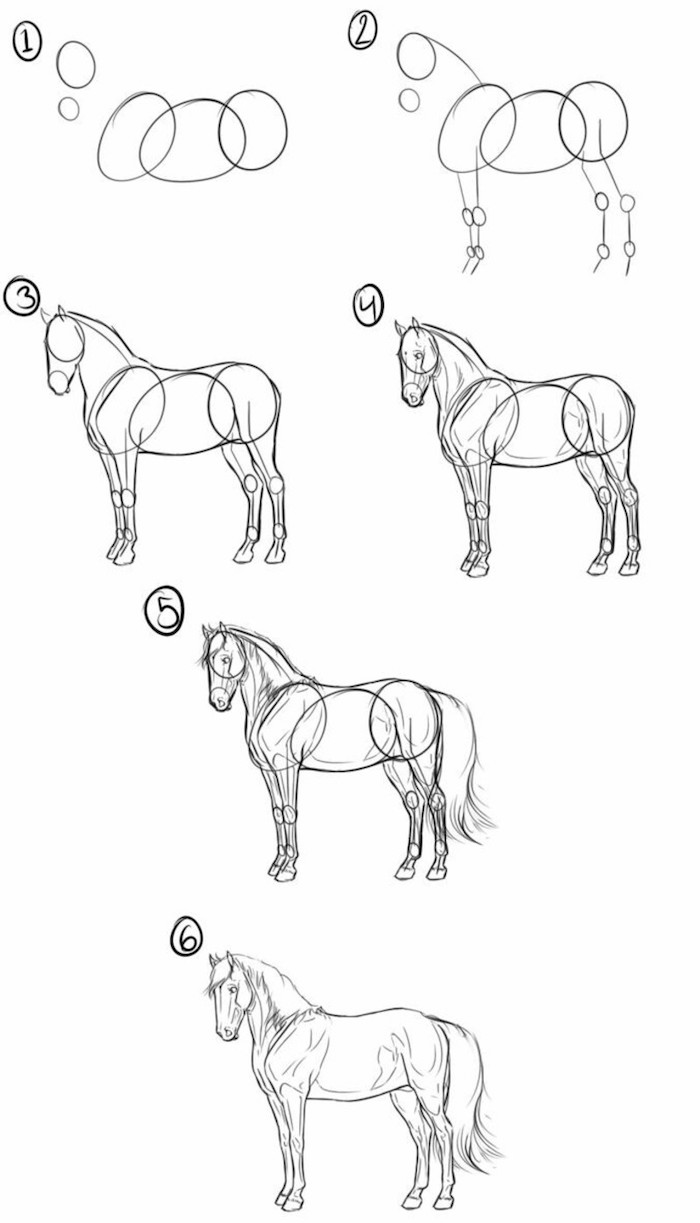 how to draw a horse how to draw horses step by step 8 horse drawing tutorial draw a to horse how