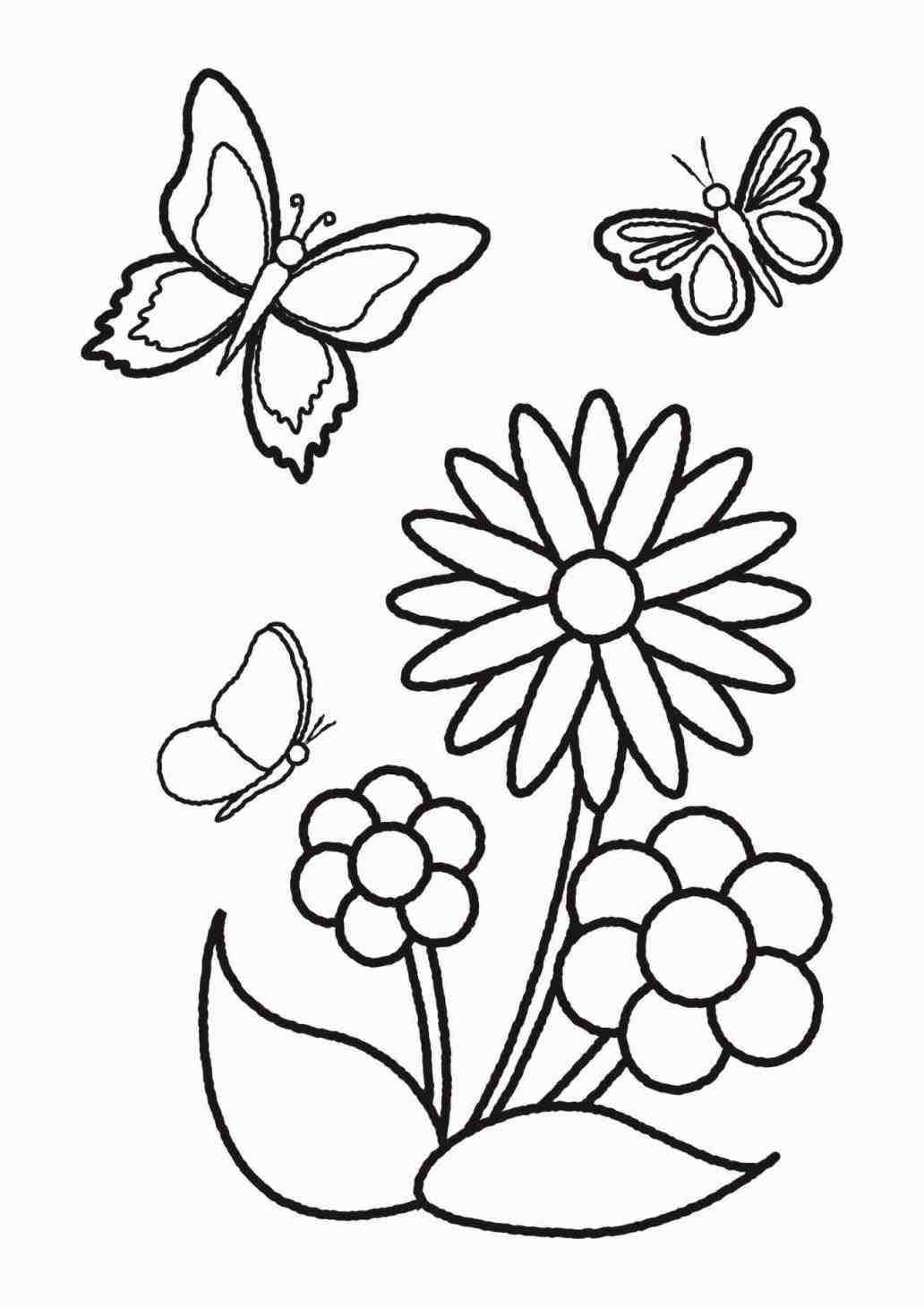 how to draw a lily how to draw a lily draw lily free transparent png lily draw to a how