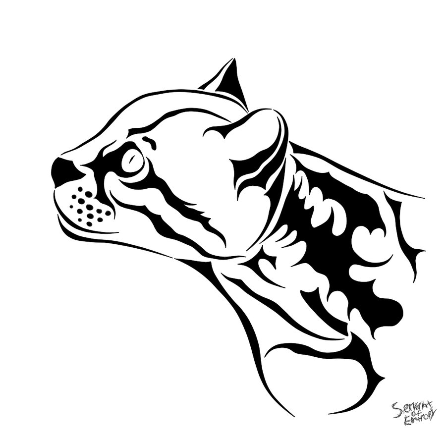 how to draw a ocelot image result for ocelot ocelot cat coloring page line a to draw how ocelot