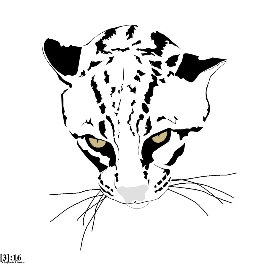 how to draw a ocelot ocelot ink drawing animal drawings ink drawing drawings a draw to ocelot how