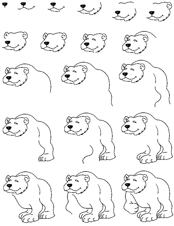 how to draw a polar bear head polar bear drawing step by step at getdrawings free download bear draw head polar to a how