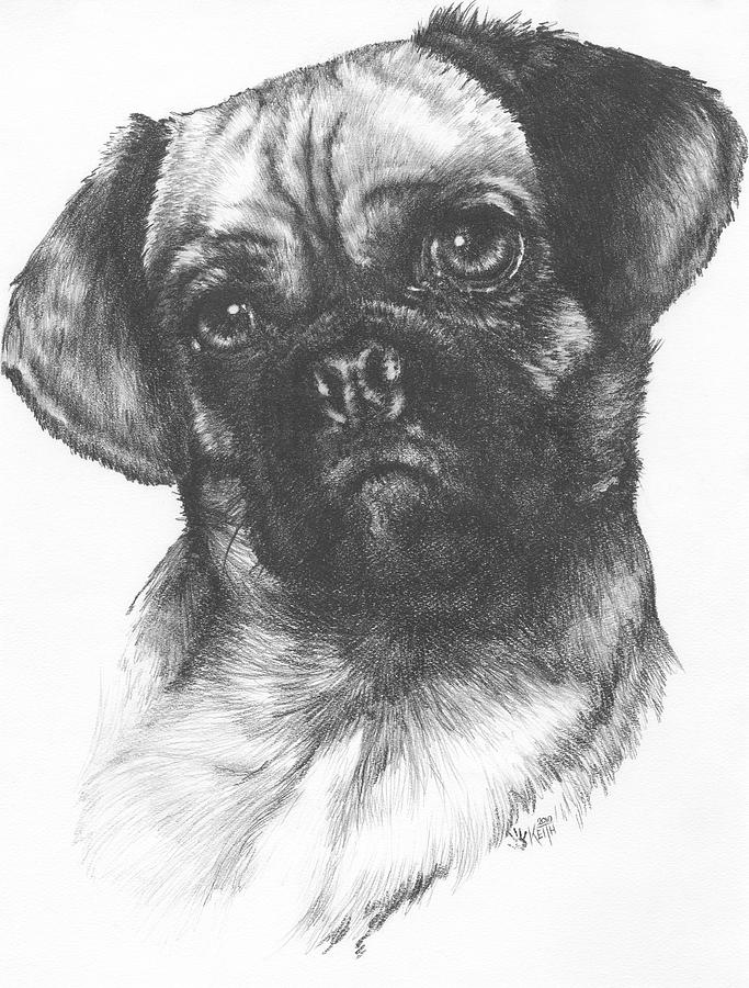 how to draw a puggle how to draw a puggle step by step drawing tutorials to how a puggle draw