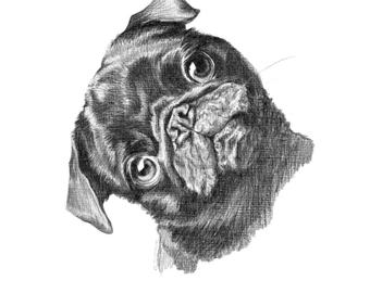how to draw a puggle puggle by dualspades on deviantart how puggle to a draw