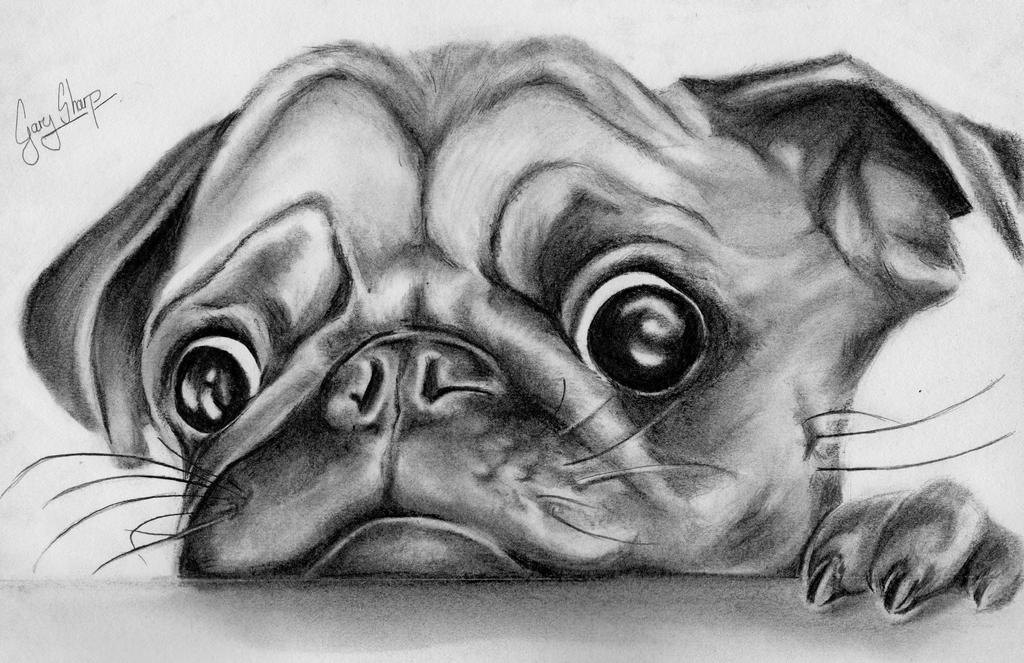 how to draw a puggle puggle coloring pages free printable coloring sheets to draw a how puggle