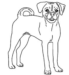 how to draw a puggle puggle dog coloring pages art dog coloring page dogs how a to draw puggle