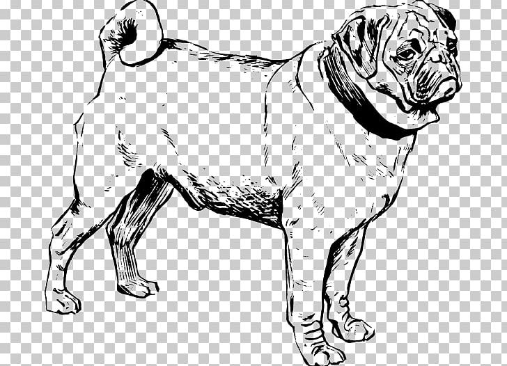 how to draw a puggle puggle french bulldog poodle puppy png clipart art a draw puggle how to