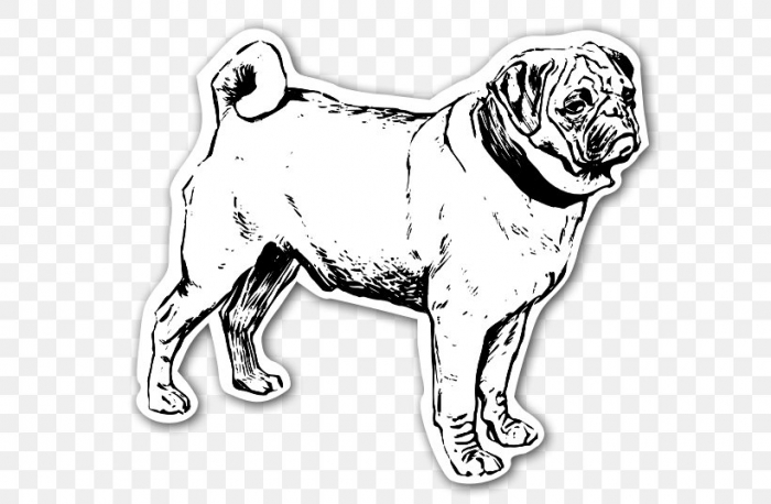 how to draw a puggle puggles wants cuddles by chairboygazza on deviantart to draw puggle a how
