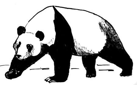 how to draw a realistic panda artist makes hyper realistic drawings to the point where realistic draw how panda a to