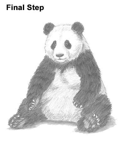 how to draw a realistic panda d39art 2013 2017 50 tattoos panda drawing bear panda to draw realistic a how