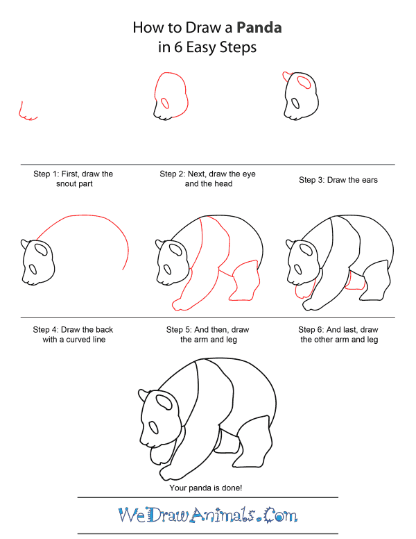 how to draw a realistic panda how to draw a panda sitting panda realistic how draw a to