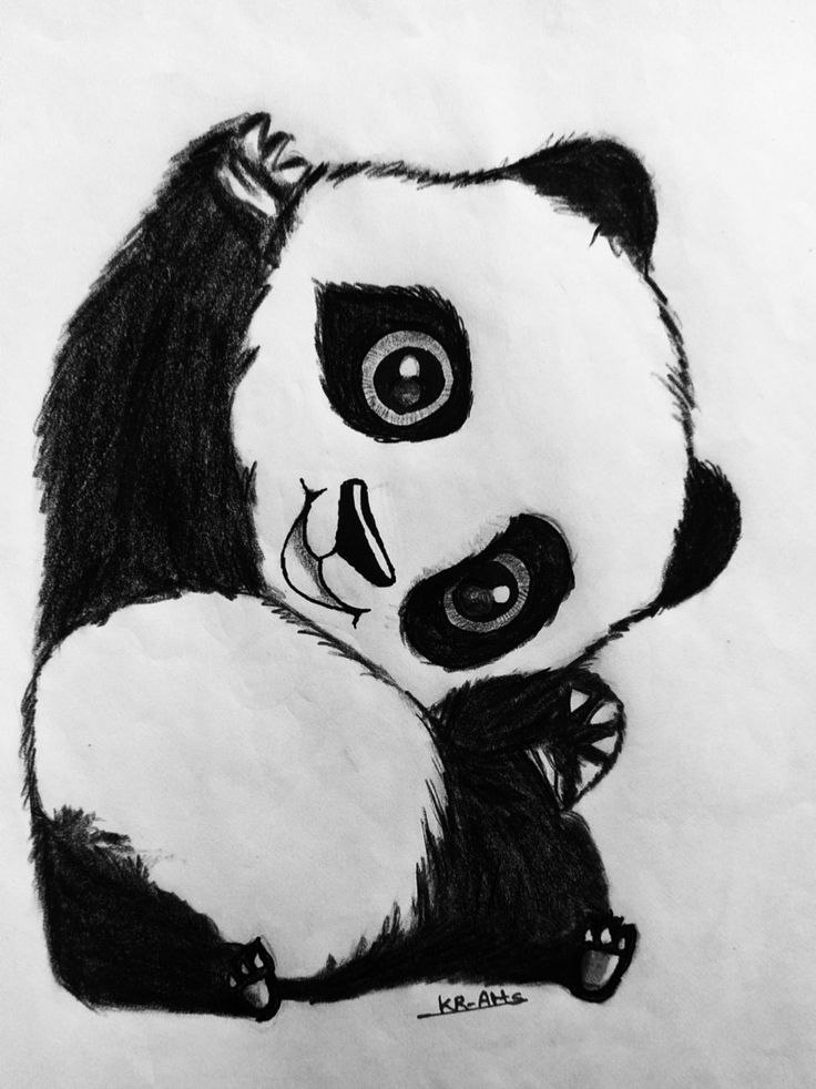 how to draw a realistic panda realistic panda drawing in 4 steps with photoshop with how panda a to realistic draw