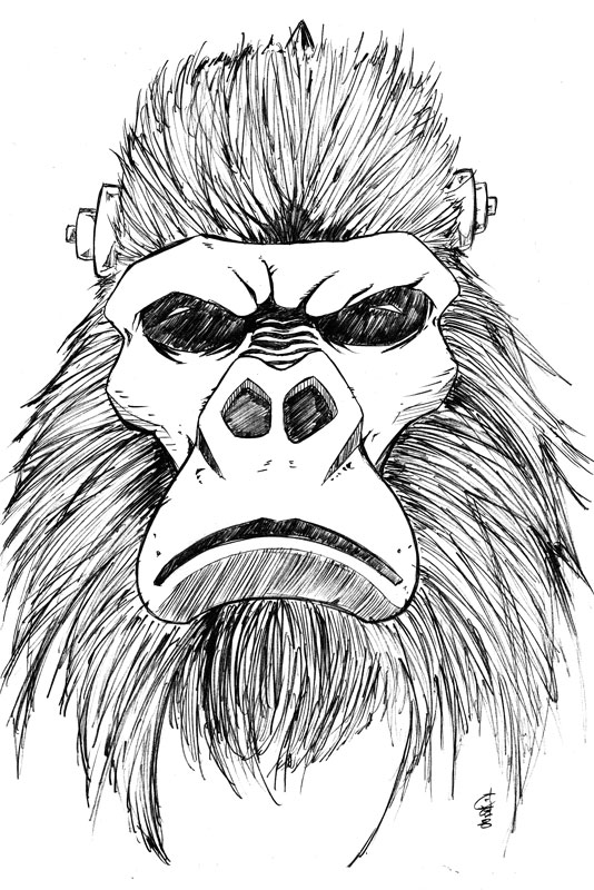 how to draw a silverback gorilla how to draw a gorilla agressive stance gorilla how silverback draw to a