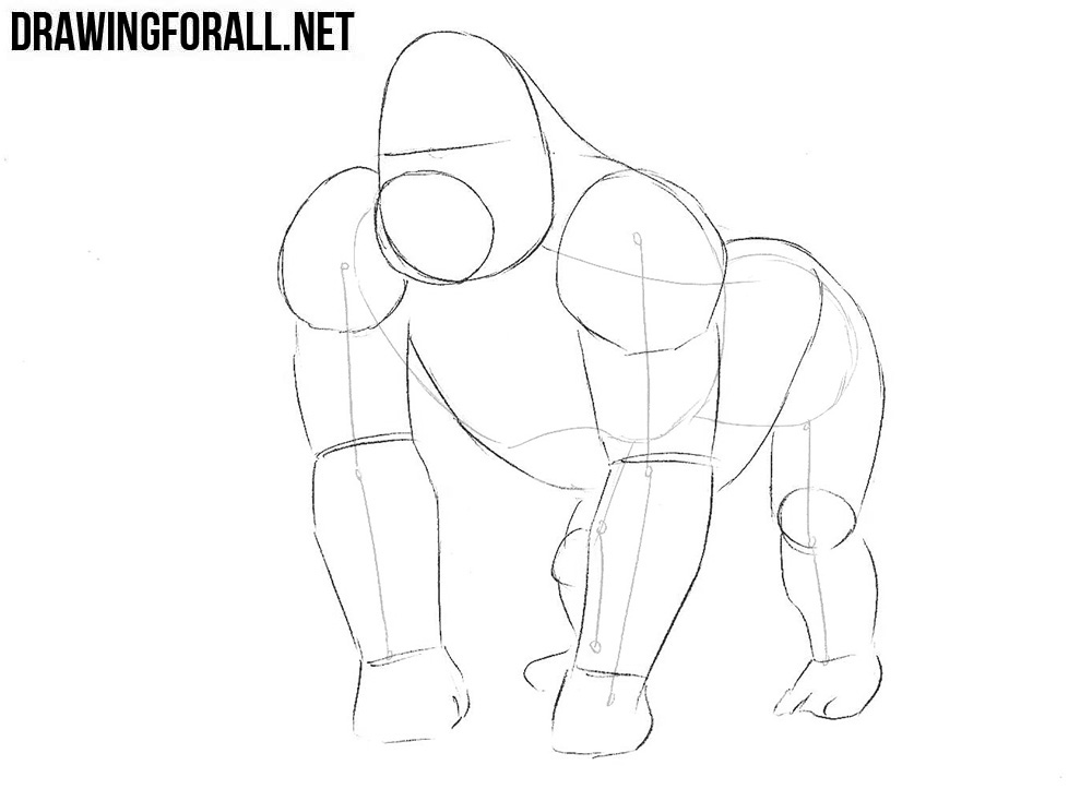 how to draw a silverback gorilla how to draw a gorilla drawingforallnet gorilla silverback to draw a how