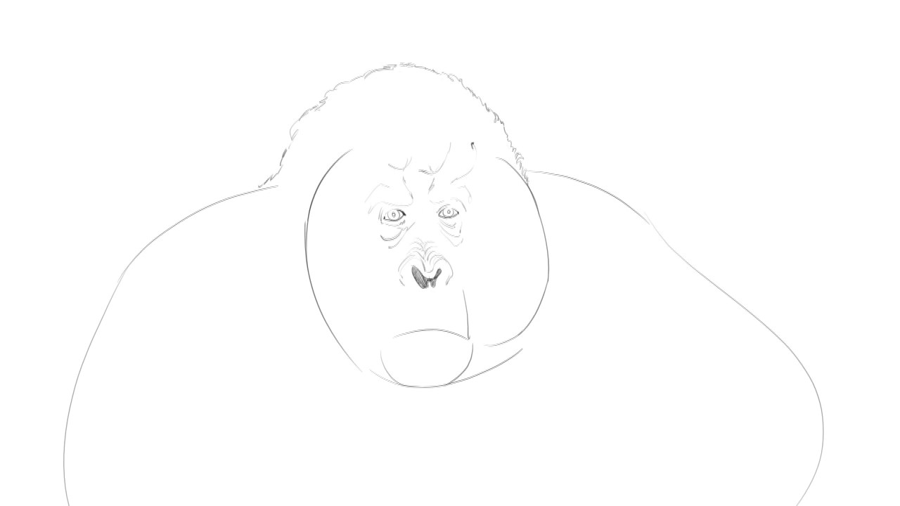 how to draw a silverback gorilla pk draw how to draw gorilla king louie from jungle book a silverback gorilla to draw how