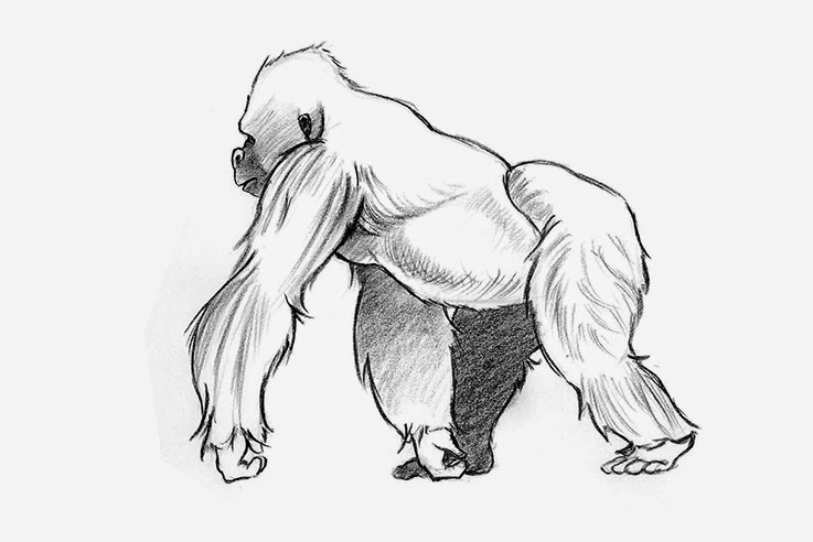 how to draw a silverback gorilla sketch gorilla grodd by road2damascus on deviantart how gorilla to silverback draw a