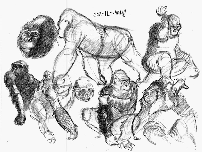 how to draw a silverback gorilla sonjebasaland animal drawing gorilla to draw how silverback gorilla a