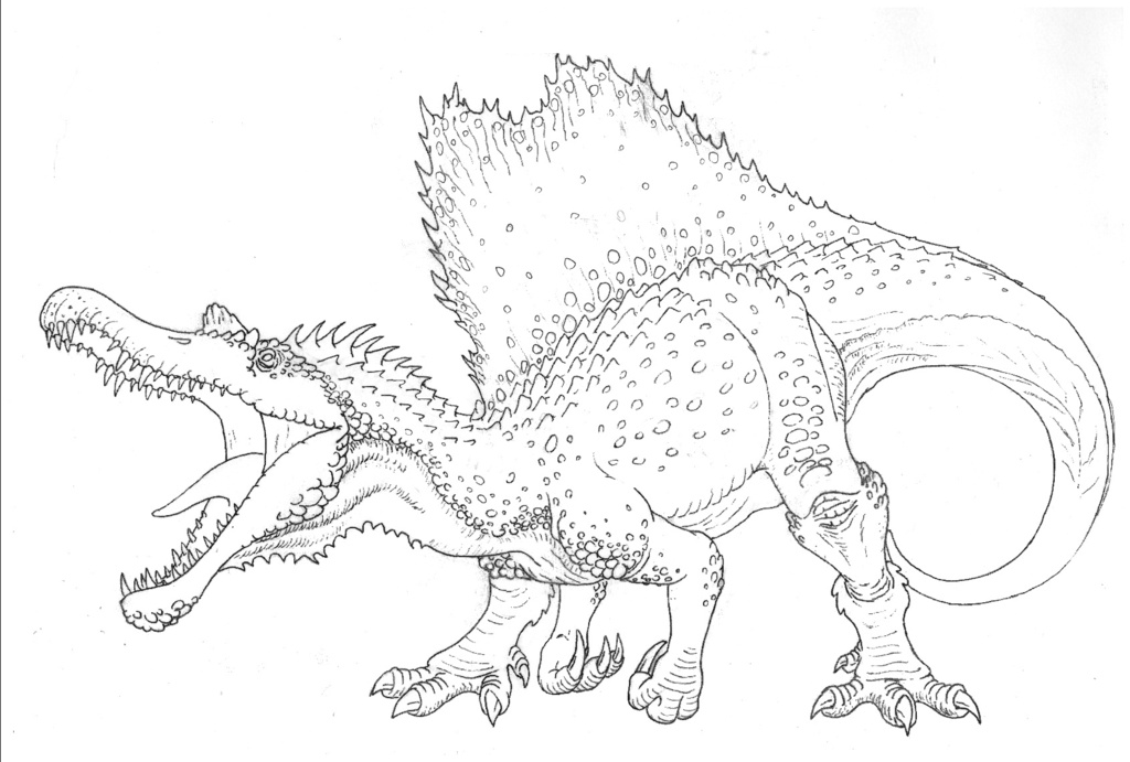 how to draw a spinosaurus spinosaurus drawing at getdrawings free download how draw to a spinosaurus