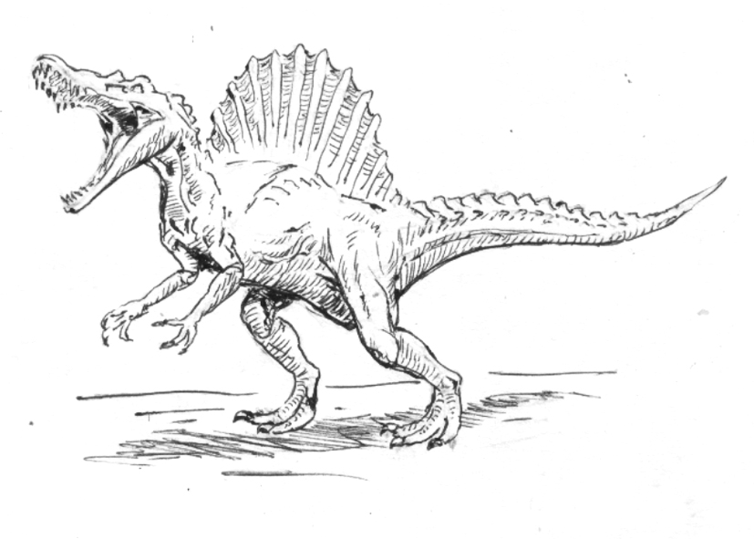 how to draw a spinosaurus spinosaurus drawing at getdrawings free download spinosaurus a how to draw