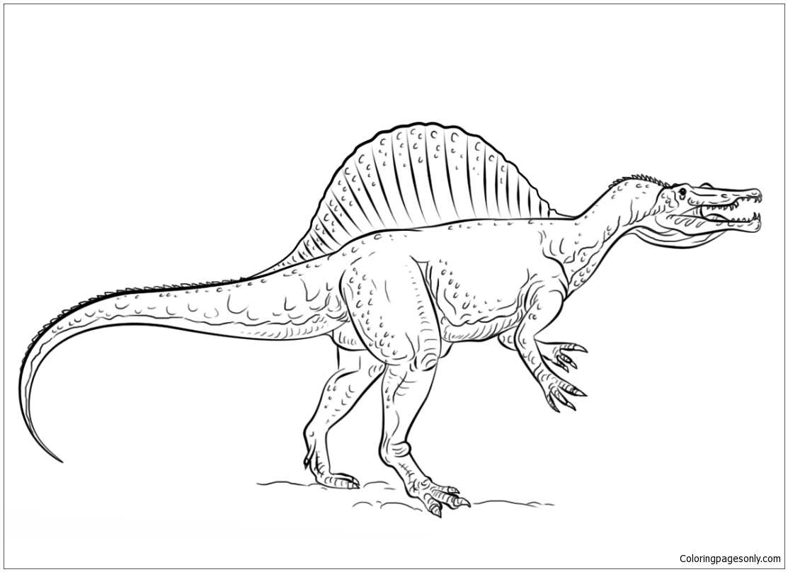 how to draw a spinosaurus spinosaurus on the hunt drawing by fred hanna a spinosaurus to draw how