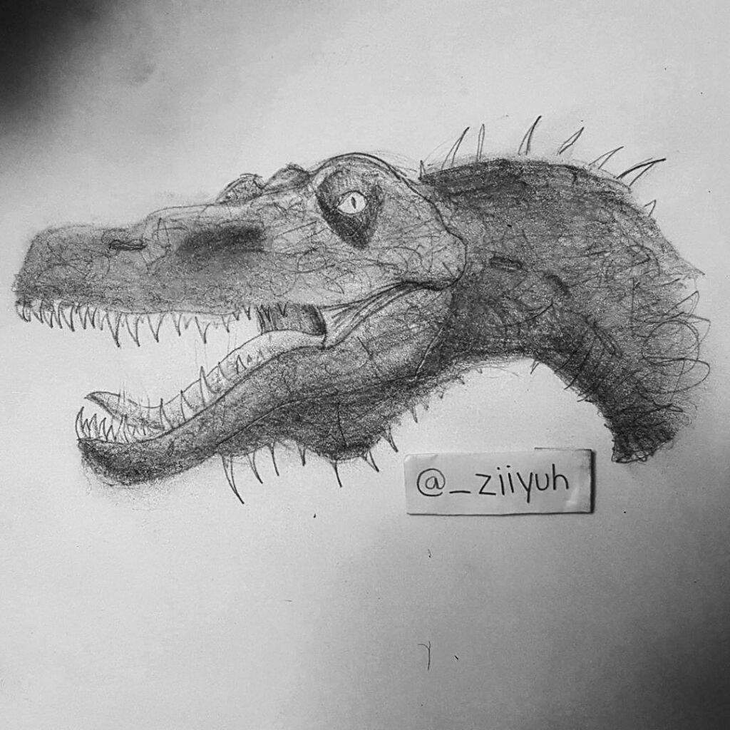 how to draw a spinosaurus spinosaurus sketch at paintingvalleycom explore how a to draw spinosaurus