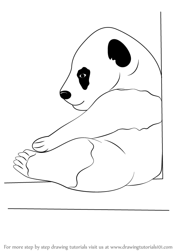 how to draw a step by step panda beautiful how to draw a cute panda bear step by step pixaby step step draw by panda how to a