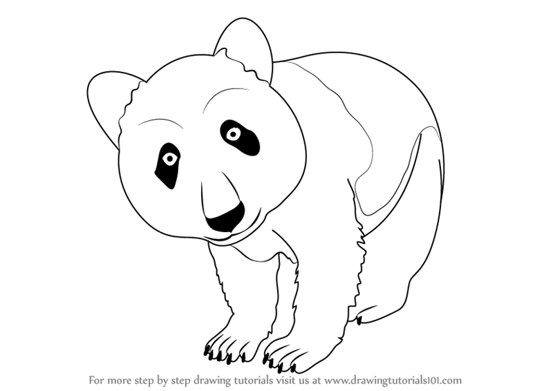 how to draw a step by step panda how to draw a panda step by step a how to draw panda step by step
