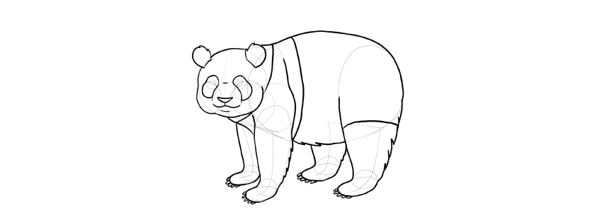 how to draw a step by step panda how to draw a panda step by step step to a how by panda step draw