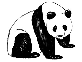 how to draw a step by step panda how to draw an easy panda step by step rainforest step a how to step panda draw by