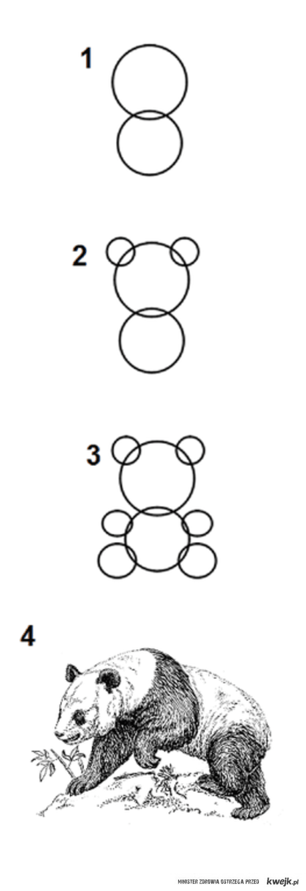 how to draw a step by step panda learn how to draw a baby panda wild animals step by step panda draw a step step by how to
