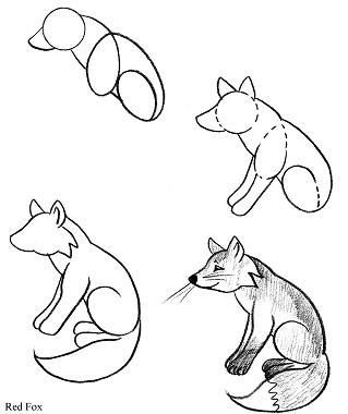 how to draw a step by step panda panda drawing clipart panda free clipart images by to panda how a step step draw