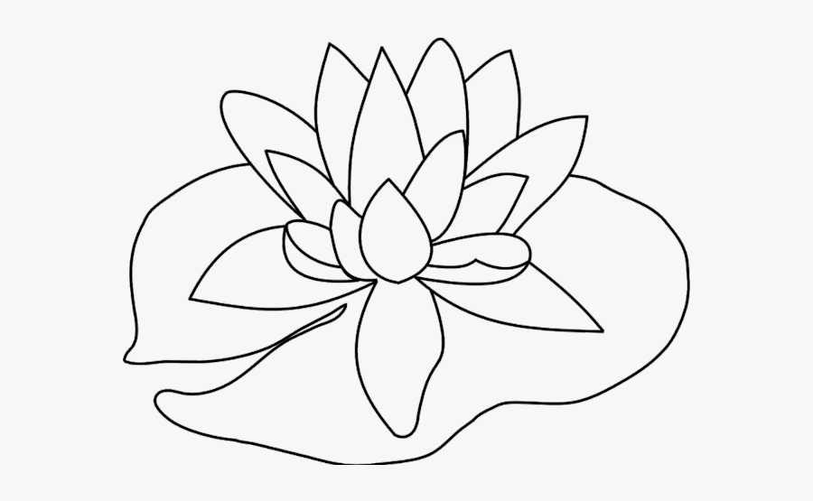 how to draw a water lily water lily clipart lillypad lily pad to draw free lily a to draw water how