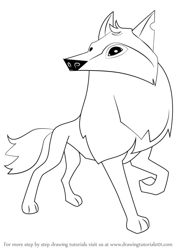 how to draw an arctic wolf how to draw arctic wolf animal jam to wolf how an arctic draw