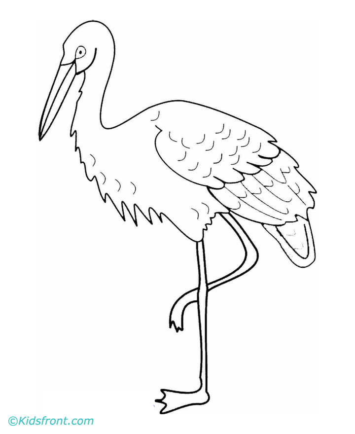 how to draw crane bird whooping crane drawing google search crane drawing to crane draw how bird