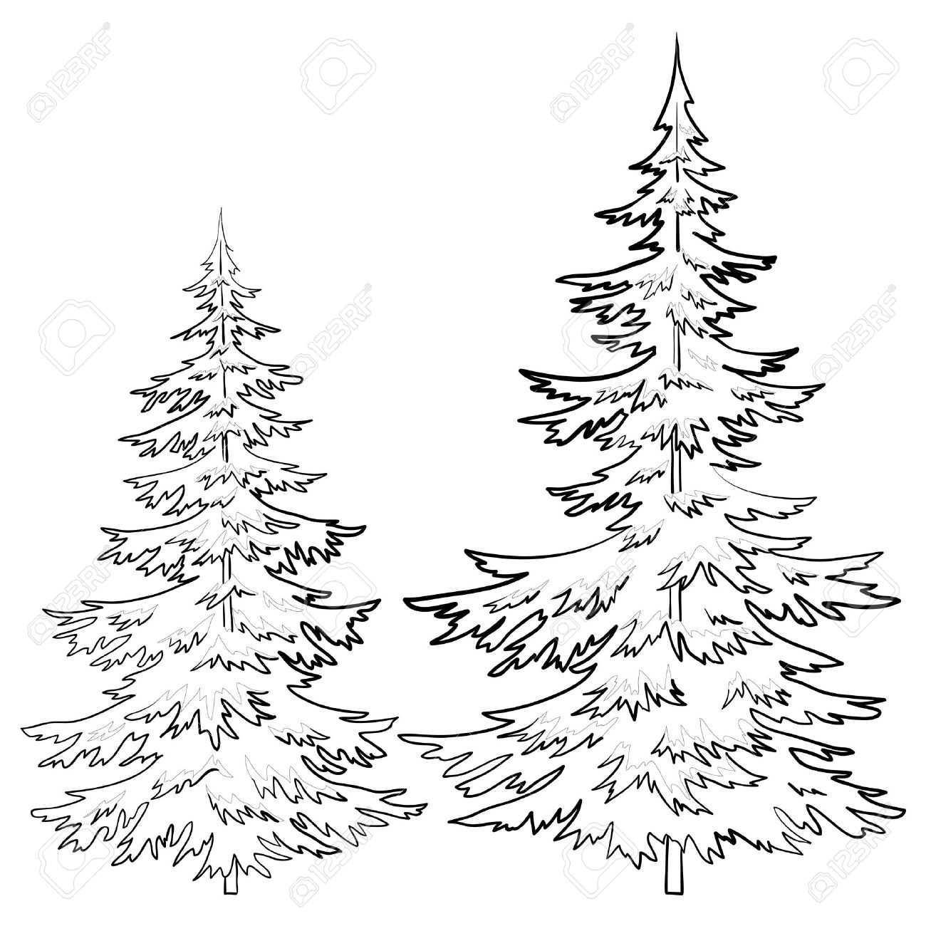 how to draw realistic pine trees how to draw realistic pine trees step by step arcmelcom to how realistic trees pine draw
