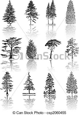 how to draw realistic pine trees how to draw realistic pine trees step by step arcmelcom trees draw realistic to how pine