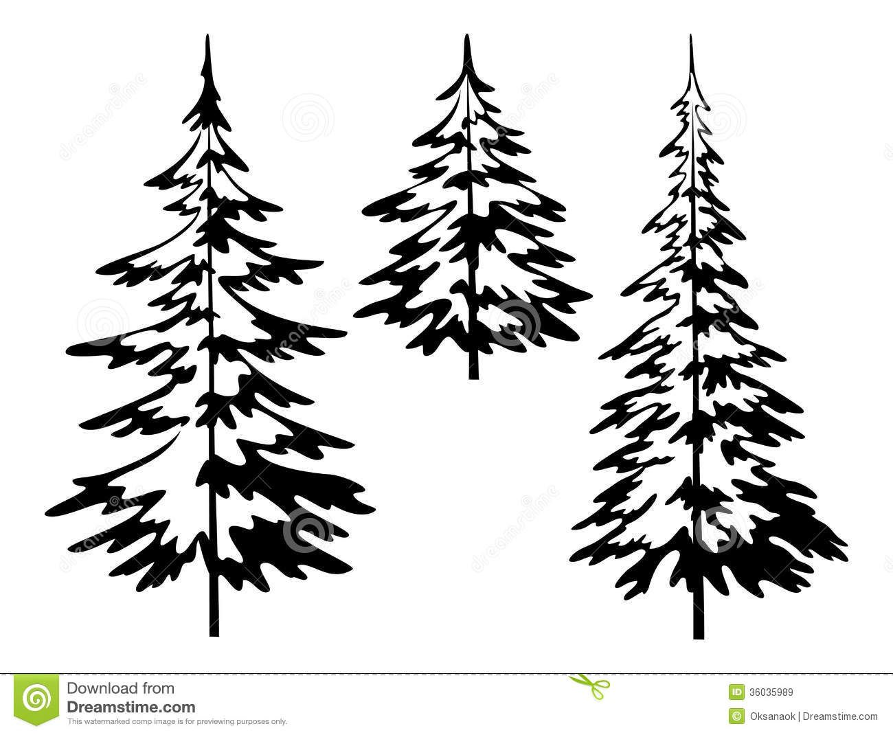 how to draw realistic pine trees pine trees drawing at getdrawings free download how to draw trees pine realistic