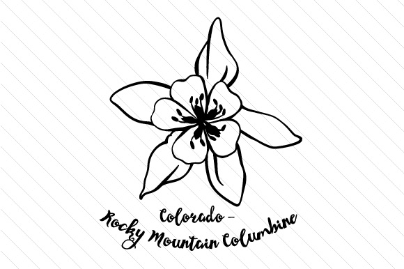 how to draw tennessee state flower 50 states drawing at getdrawings free download state to draw how flower tennessee