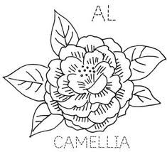 how to draw tennessee state flower montana drawing at getdrawings free download to how flower draw tennessee state