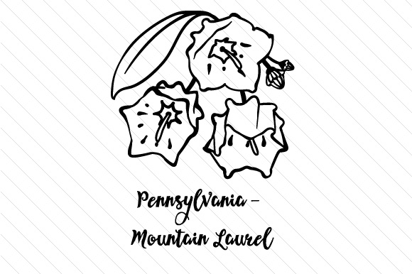 how to draw tennessee state flower state flower pennsylvania mountain laurel svg cut file by draw how state to flower tennessee